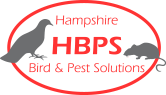 Hampshire Bird & Pest Solutions